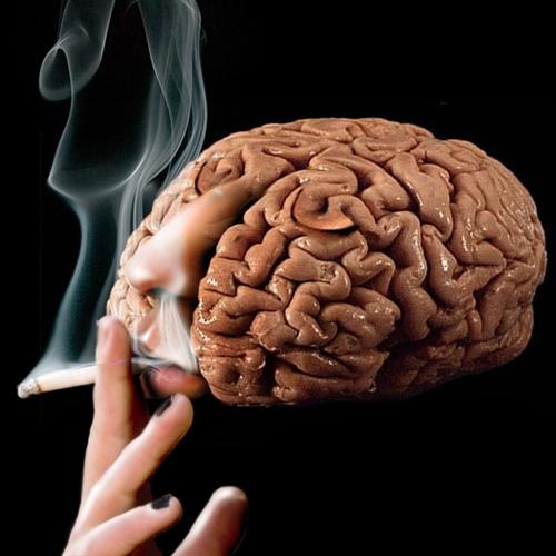 Puede la nicotina prevenir el envejecimiento del cerebro?